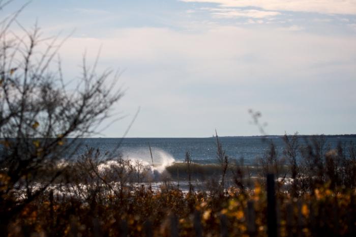 weekly swells 21
